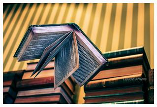 Livros / Books