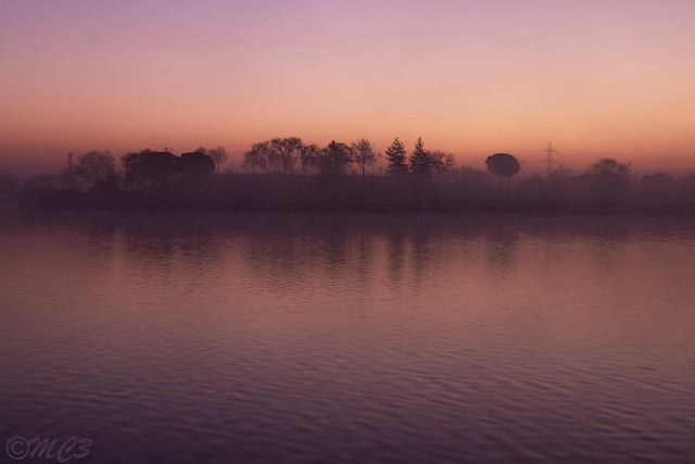 Amanecer entre niebla y bruma. Dawn between Fog and mist
