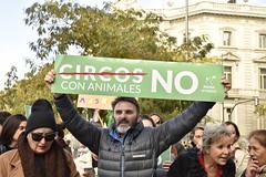Concentración NO a los circos con animales