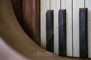 Steinway   by niseag03