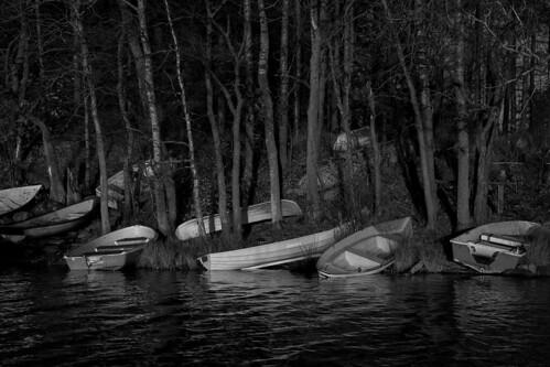 landscape pitkäjärvi syksy bw jupperi vene espoo suomi autumnevening autumn blackandwhite boat fall finland järvi lake monochrome scandinavia uusimaa fi