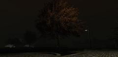 stormy night - raw taking at Nates