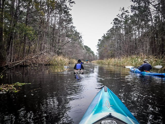 Old Santee Canal-56