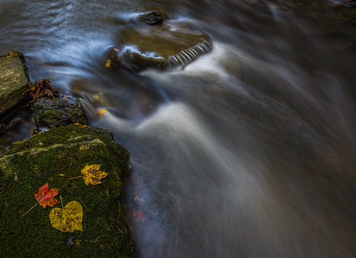 Abstract cascade | by Bernie Kasper (5 million views)