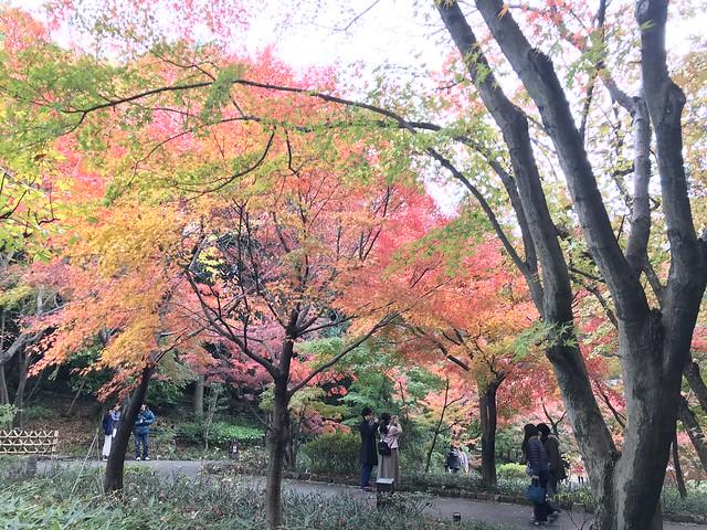 徳川園 Tokugawa Garden