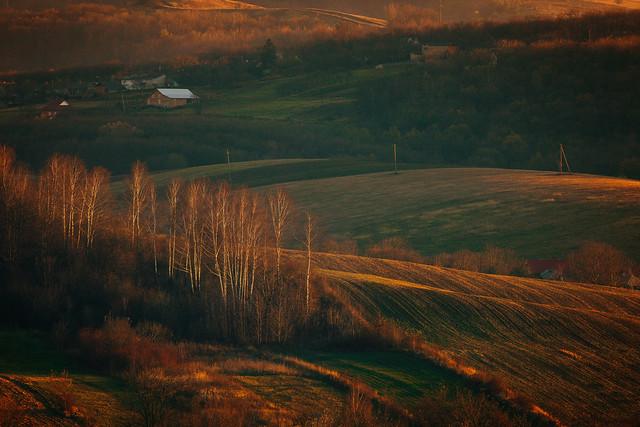 Bukovina evening landscapes