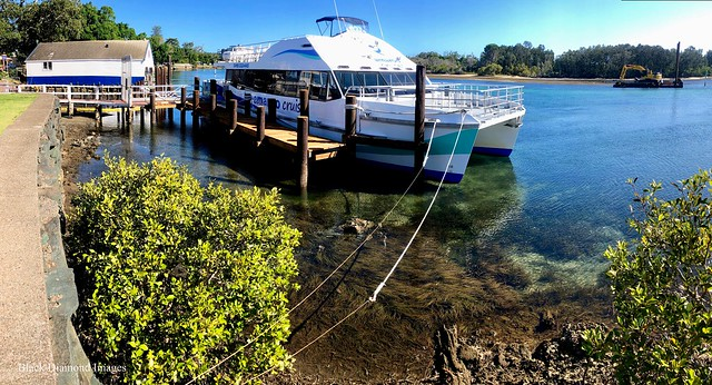 Amaroo Cruise Boat Berthed at New Wharf, Fishermans Wharf, Breckenridge Channel, Forster, Mid North Coast, NSW