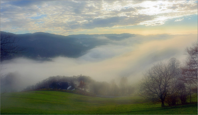 Early evening - The fog is coming in