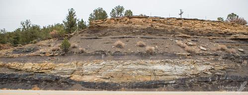 2018 colorado cretaceous november trinidad channelsand coal roadcut peat erosion geology depositionalenvironment fluvial