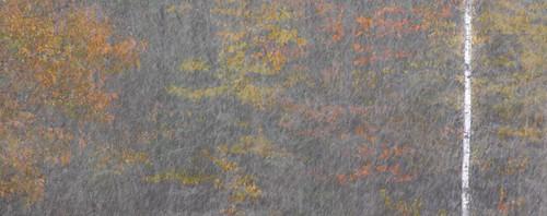 maine snow autumn reflection pond