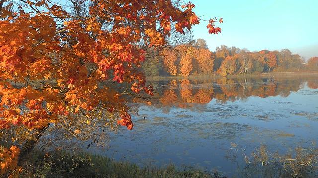 Autumn Fairytale 78