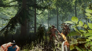 The Forest | by PlayStation.Blog