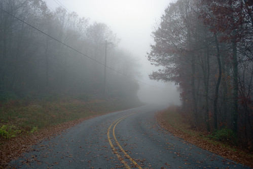 fog mist autumn northcarolina trees landscape rural