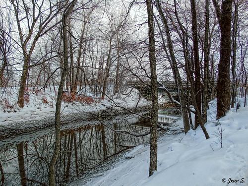 bridge trees winter white snow water river flickrunitedaward