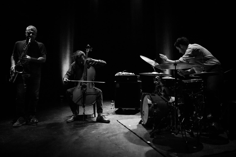 08 Motion Trio-3334