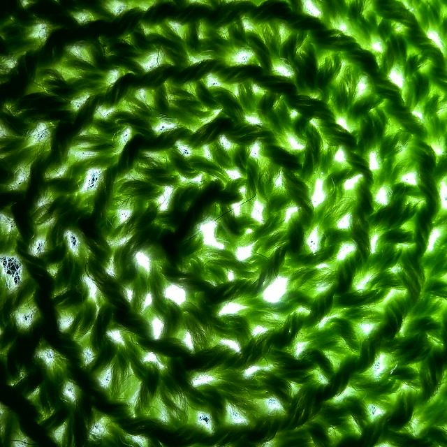 Green! HMM! (in Explore)