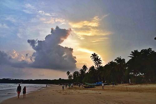 srilanka beachscape beachphotography beachlife beach exploringsrilanka beautifulsrilanka nikonphotography nikonphotographers nikon mawellabeach palmbeach palms