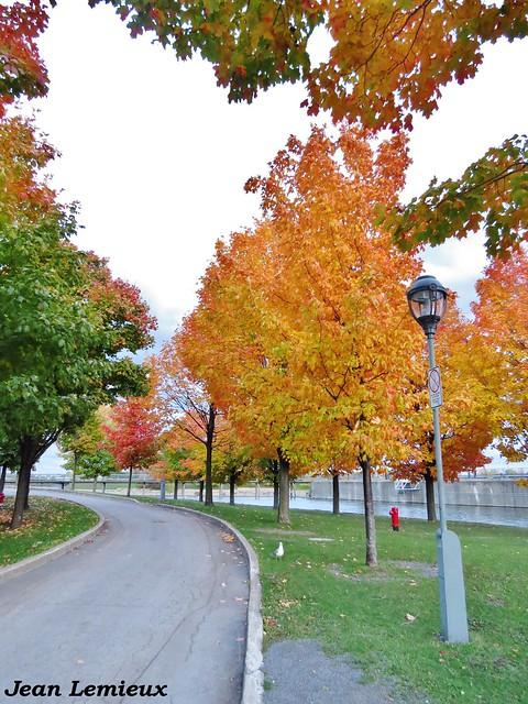 Ville-Marie - Parc du Bassin-Bonsecours