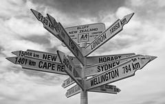 Escape routes for Kiwis?