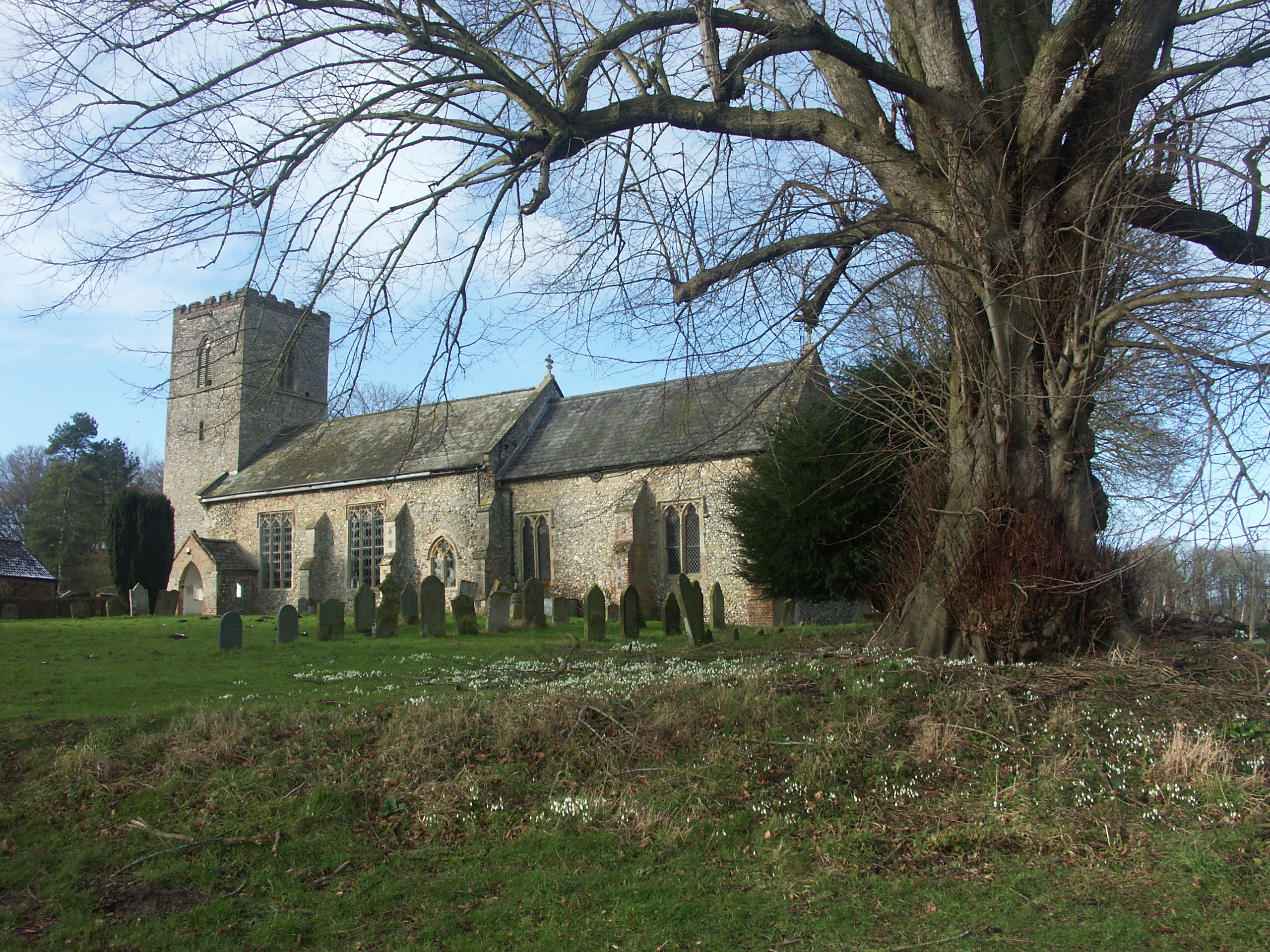 St Martin, South Raynham, Norfolk