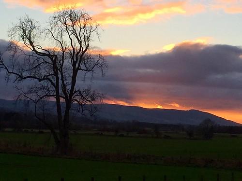 perthshire scotland visitscotland walkhighlands ph31fy auchterarder naked tree sunset clouds rfp c