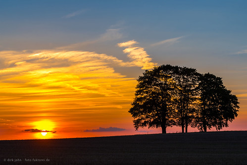 fivetrees sunset raitschin upperfranconia germany landscape trees clouds hill deutschland oberfranken landkreishof landschaft landscapephotography landschaftsfotografie