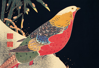Golden Pheasant in the Snow (ca. 1900) illustration by Ito Jakuchu. Original from The MET Museum. Digitally enhanced by rawpixel.