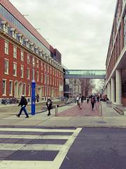 Temple U campus buildings 1