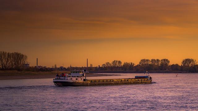 Winterabend am Rhein