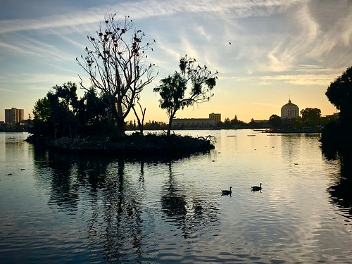 lake lakemerritt oakland california adamspoint sunset island trees city skyline geese evening reflection