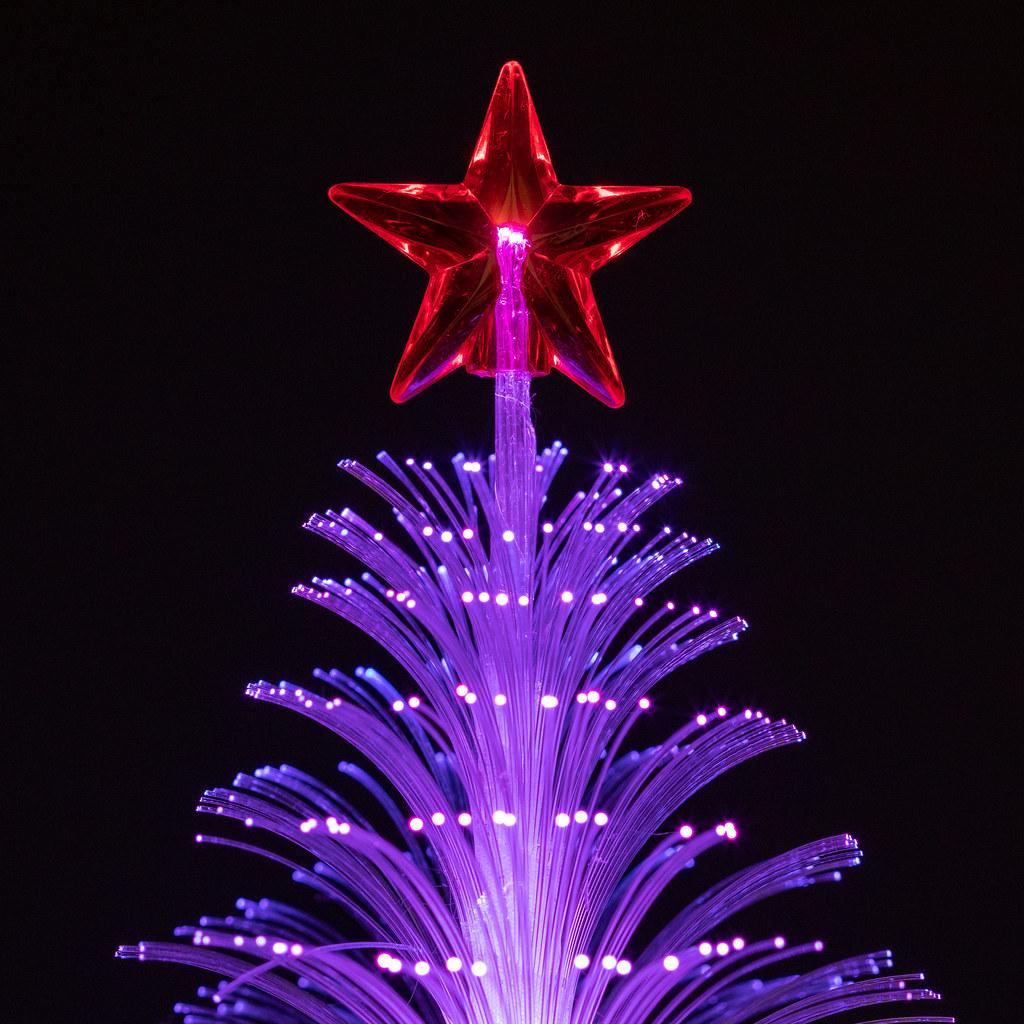 Tiny Christmas.The Tiny Christmas Tree Purple This Is A Macro Photo Of