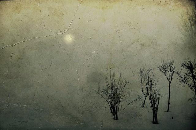 Pleine lune voilée ...