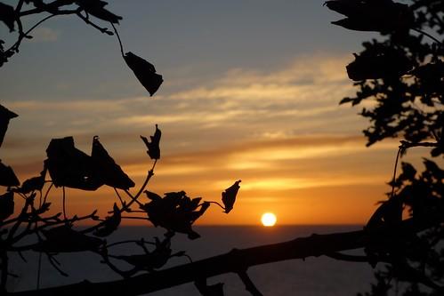 aberdeen scotland escocia sony sonyrx100 sonydscrx100 sunrise amanecer sun sol