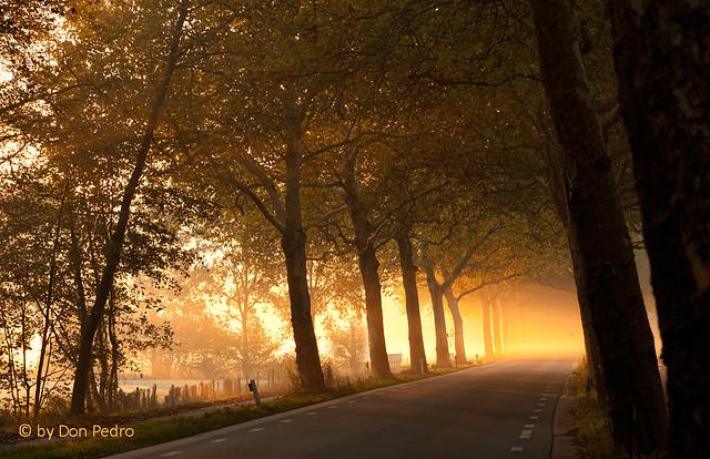 zonsopgang-bij-Terschuur