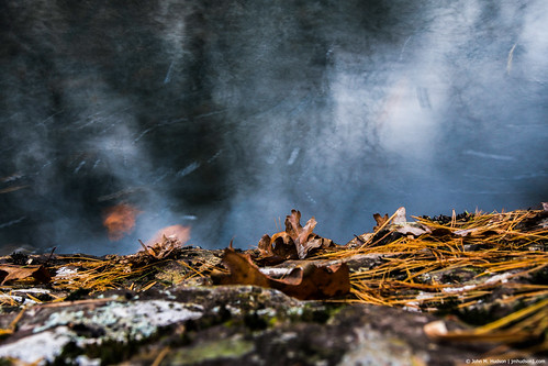 2018 grouped virginia nikond500 outdoor outdoors nature water forest trees air autumn sunset mountains pool inmotion favorited commented