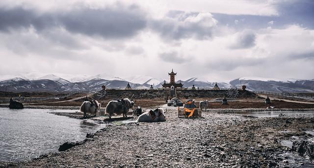 Tibetan Temple aside the Qing Hai Lake