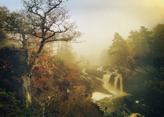 Rogie Falls, Nr. Contin, Inverness