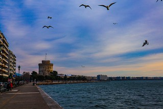 White Tower overflown by seagulls