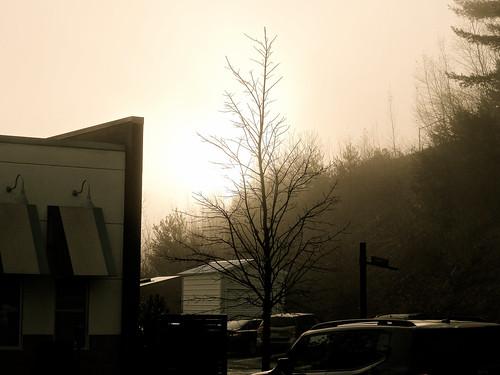 vestal newyork sunrise fog grey wet lateautumn earlywinter
