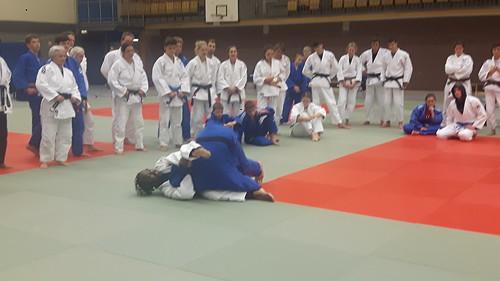 Dsc Judo