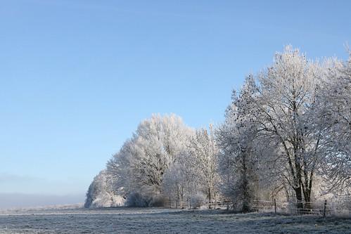 Winterspaziergang   by herz-allerliebst
