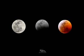 Lunar Eclipse January 2019