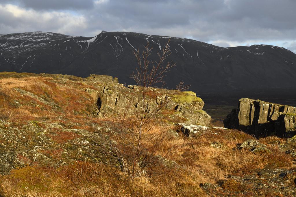 The Almannagjá fault, Þingvellir national park within the