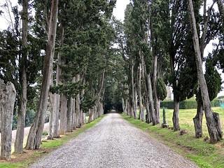Valdera - Toscana 191 | by Agnese - I'll B right back
