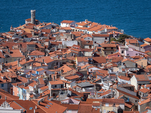 The rooftops of Piran | by 802701
