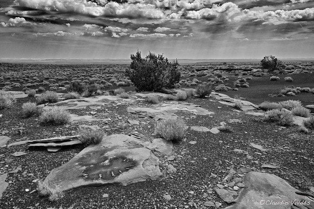 The Painted Desert and The Rain