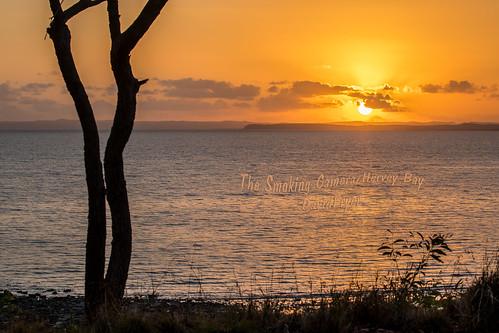 sunrise herveybaycanon5dmk4 canon100400mmmk2 silhouette wow seaside paradise art image