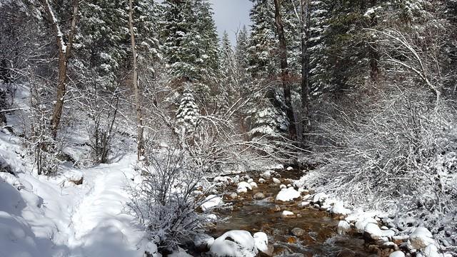 No Name Creek, Colorado