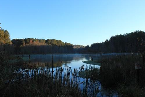 samslakebirdsanctuary fayettevillegeorgia landscape