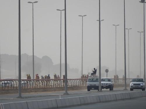 Al Marmoom Camel Racing Track - 18